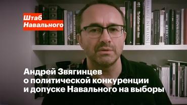 Андрей Звягинцев, режиссёр